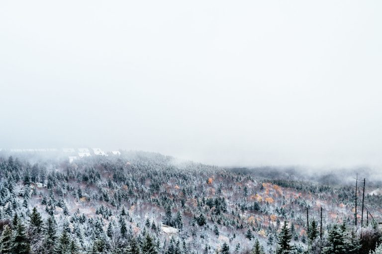 Snowshoe Resort Gets First Snow of the Season