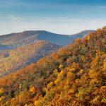Asheville NC Fall Colors